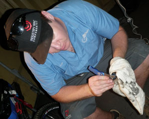 Than White peels up the seal to re-grease using his handy UK-1 for suspension bearings
