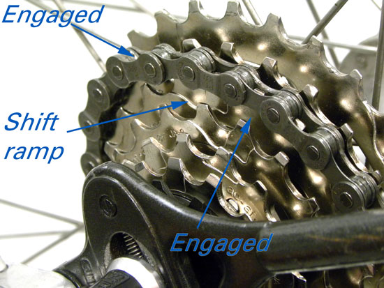 The modern indexing cog will engage both cogs as the chain moves