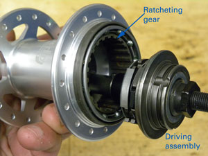 The driver and ratchet inside hub shell