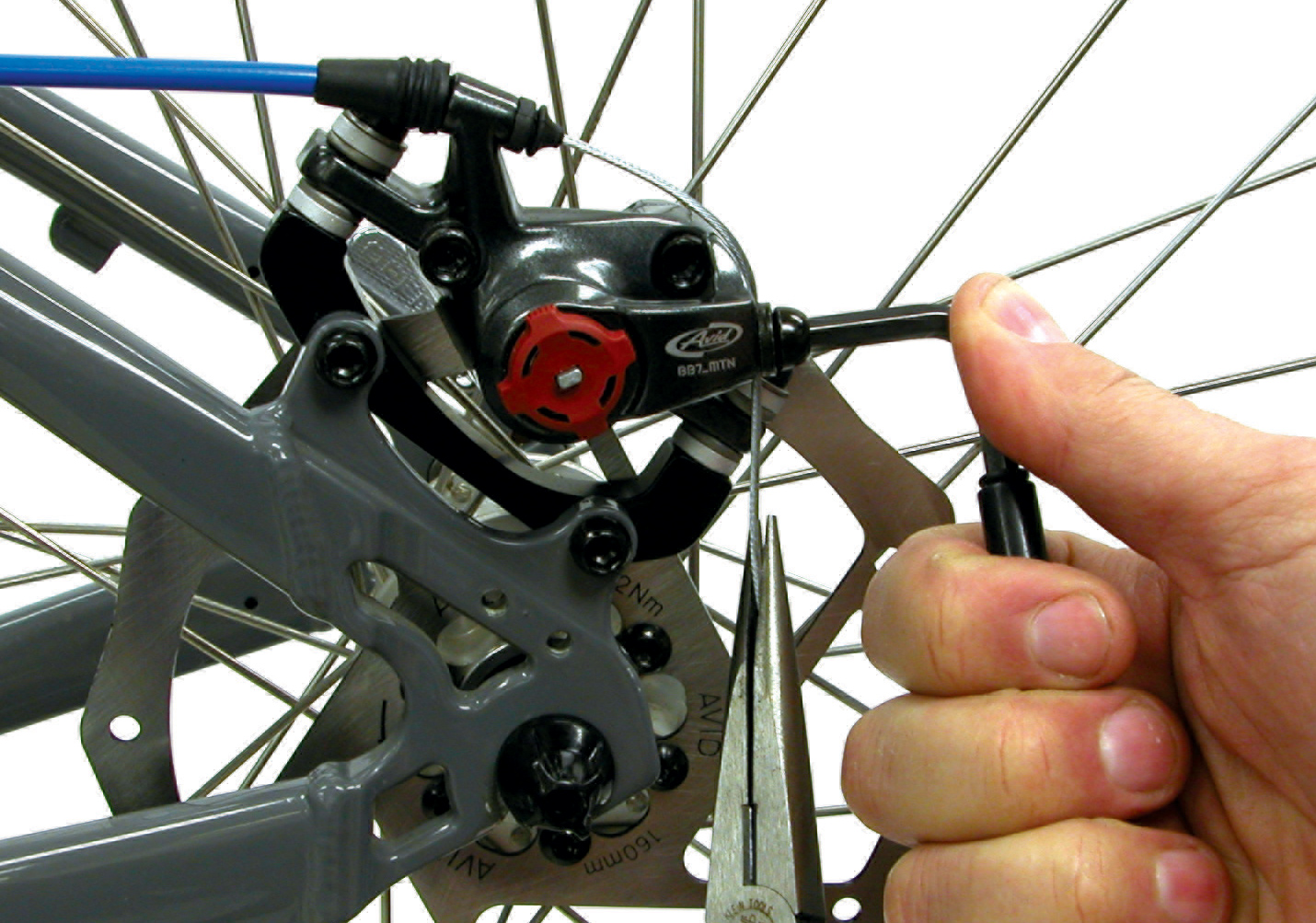 how to fix squeaky disk brakes on a bike