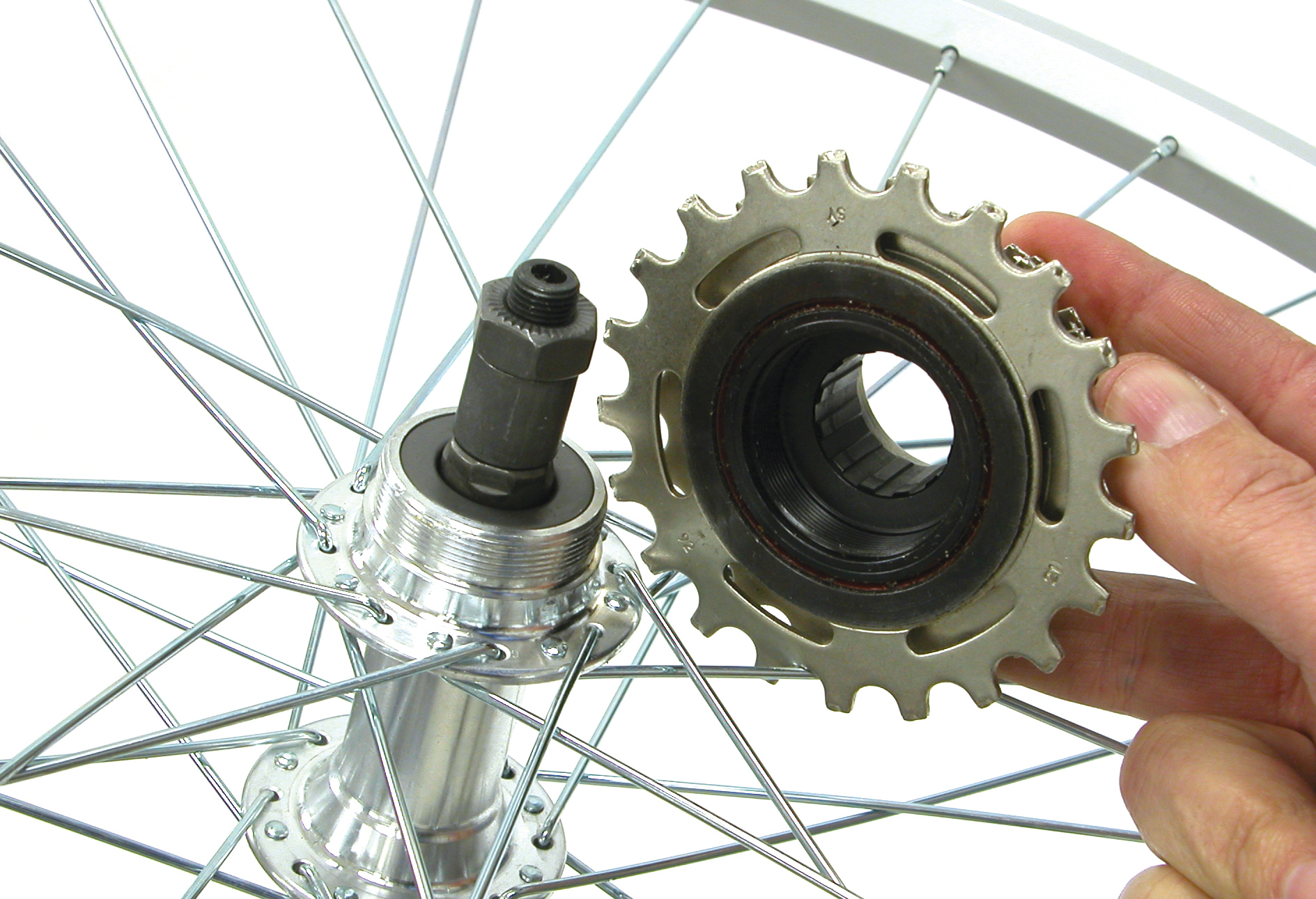 How to Change a Rear Cassette forecasting